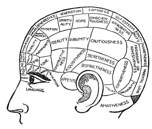 Human Psychology: 10 Secrets of the Creative Brain